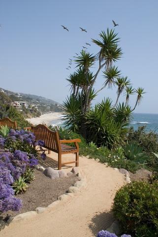 Saustoni_Laguna_Beach_Benches